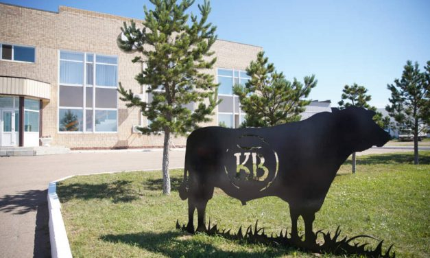 Akmola region welcomes Kazbeef's latest meat processing plant