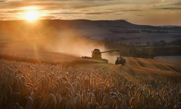 Agricultural ties between America and Kazakhstan continue to strengthen